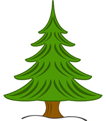 The Sheffield Christmas Tree Company